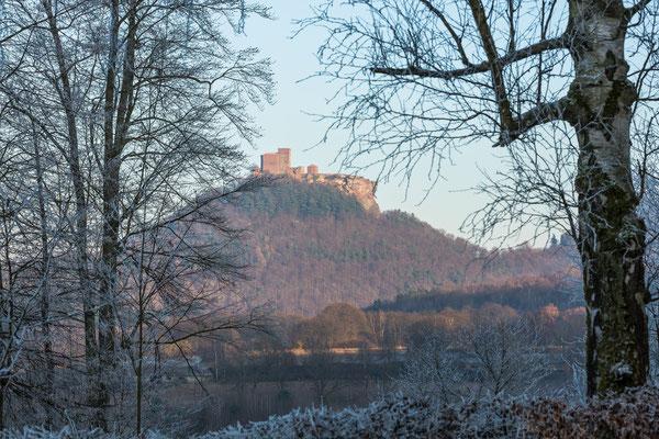Winter am Trifels