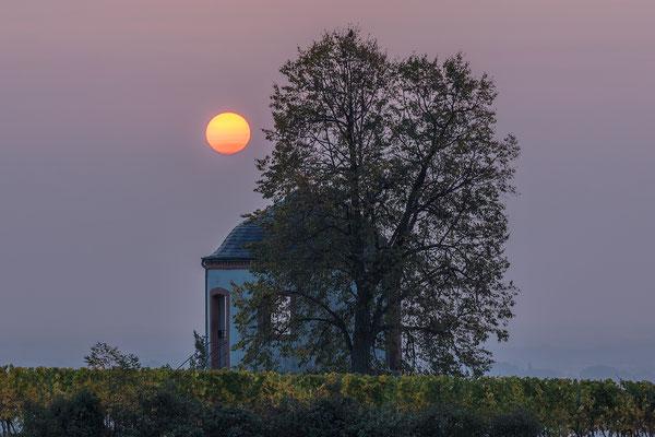 """Sonnenaufgang am """"Deidesheimer Tempel"""""""