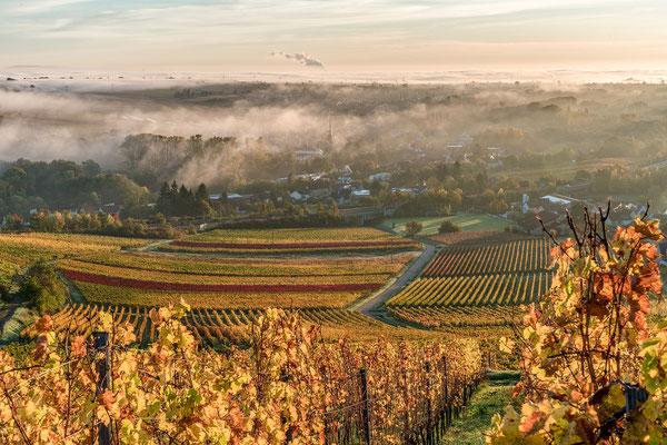 Herbstmorgen bei Birkweiler