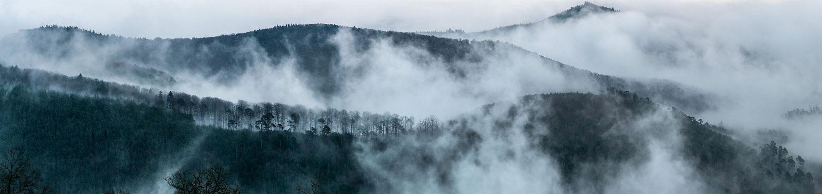 Nebelstimmung auf der Ruine Wegelnburg