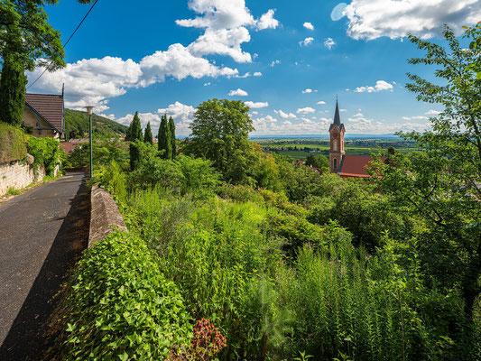 Blick auf Haardter Kirche und die Rheinebene