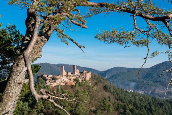 Blick auf die Burgruine Altdahn