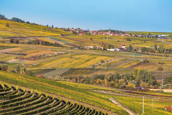 Blick auf Frankweiler im Herbst