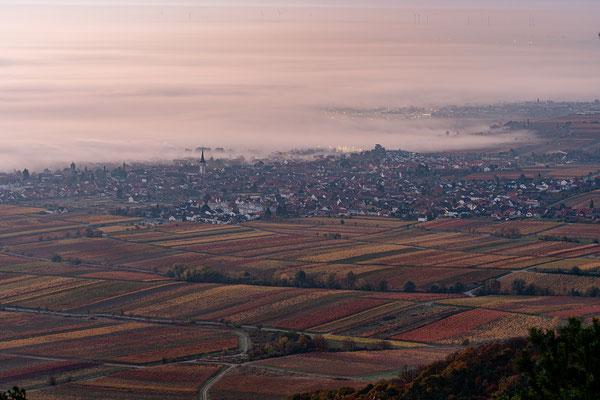 Nebelmorgen am Sühnekreuz