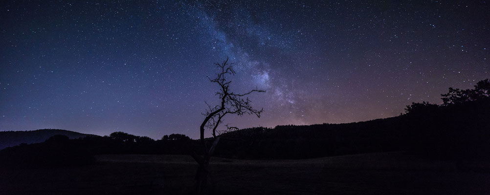 Ansicht der Milchstraße vom wahrscheinlich dunkelsten Ort in der Südpfalz