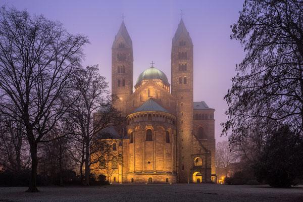 Speyerer Dom im Winternebel