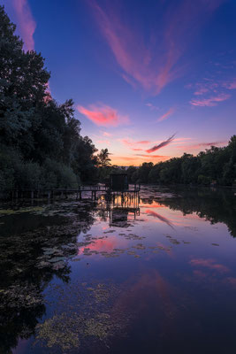 Abendrot am Jockgrimer Altrhein