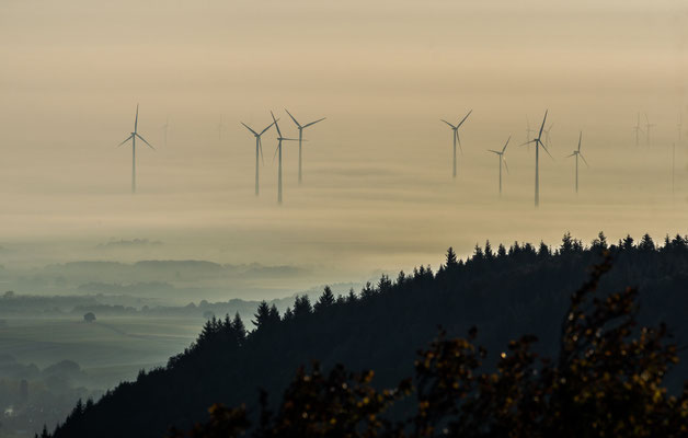 Windräder in nebliger Landschaft