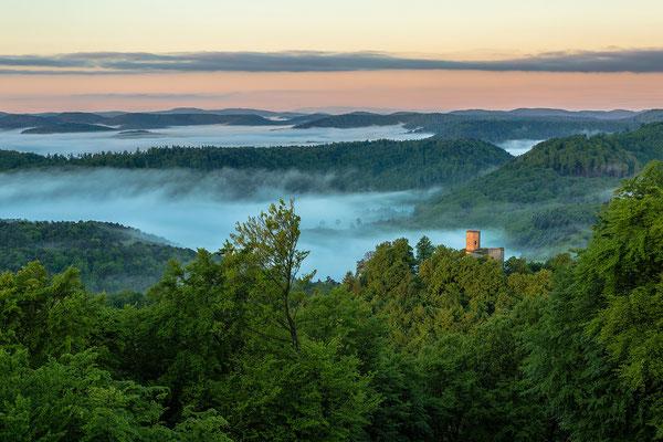 Ausblicke auf Burg Gräfenstein und den nebligen Pfälzerwald