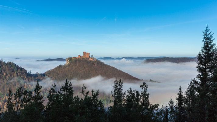 Burg Trifels über dem Nebel