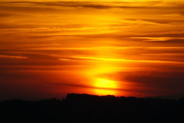 Sonnenuntergang am Geierstein
