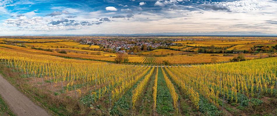 Herbststimmung in Deidesheim