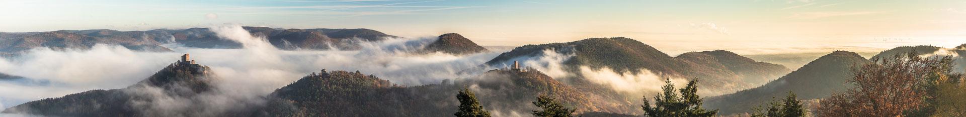 Burg Trifels im Nebel