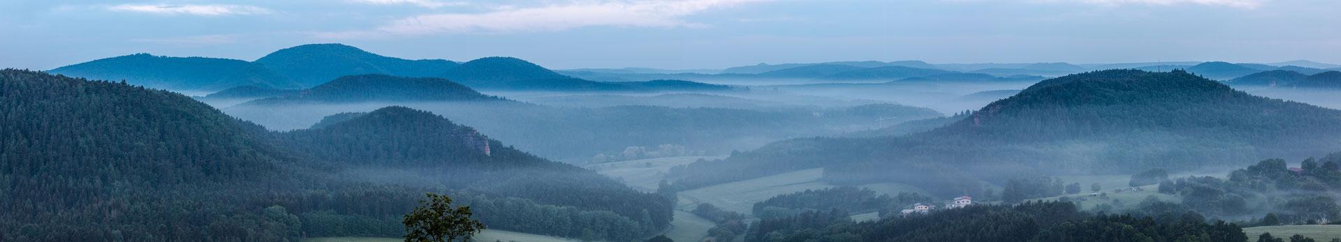 Nebliger Morgen auf der Ruine Drachenfels