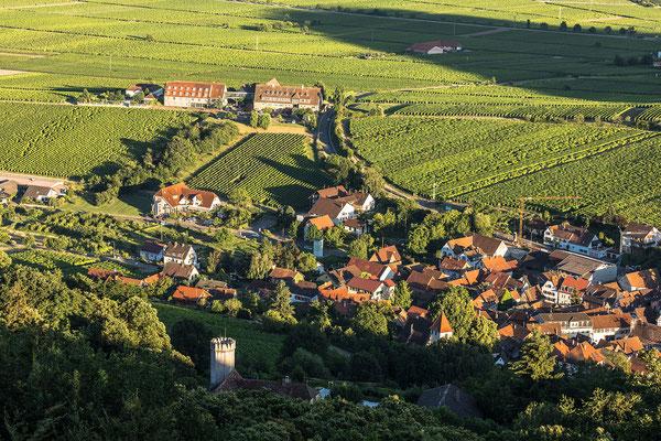 Leinsweiler, Slevogthof und Leinsweiler Hof