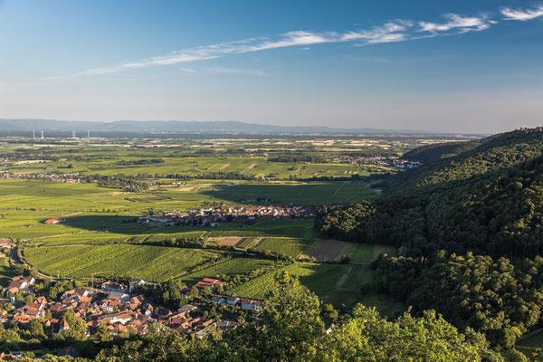 Blick nach Süden über Rheinebene und Schwarzwald