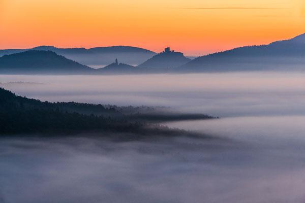 Blick auf Burg Trifels und Asselstein übers Nebelmeer