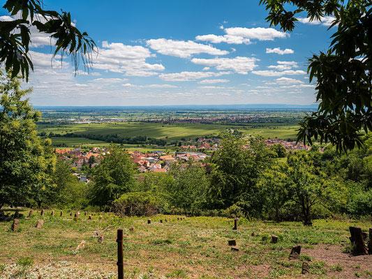 Aussicht auf Sankt Martin und die Rheinebene