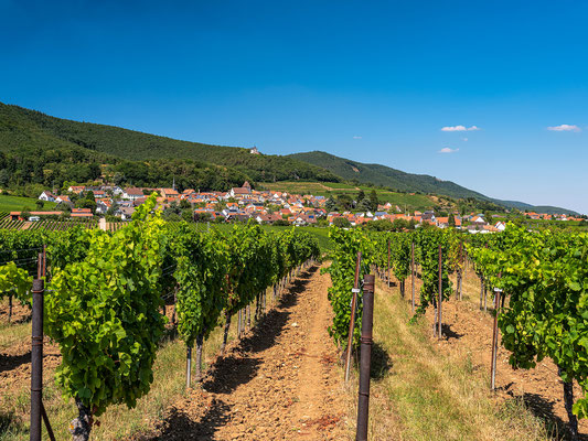 Ausblick auf Gleisweiler