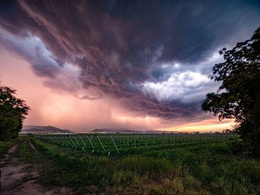 Gewitter über Neustadt