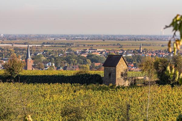Blick auf Deidesheim und Ruppertsberg