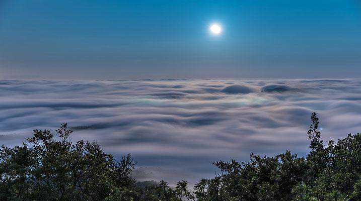 Neblige Mondnacht am Rehbergturm