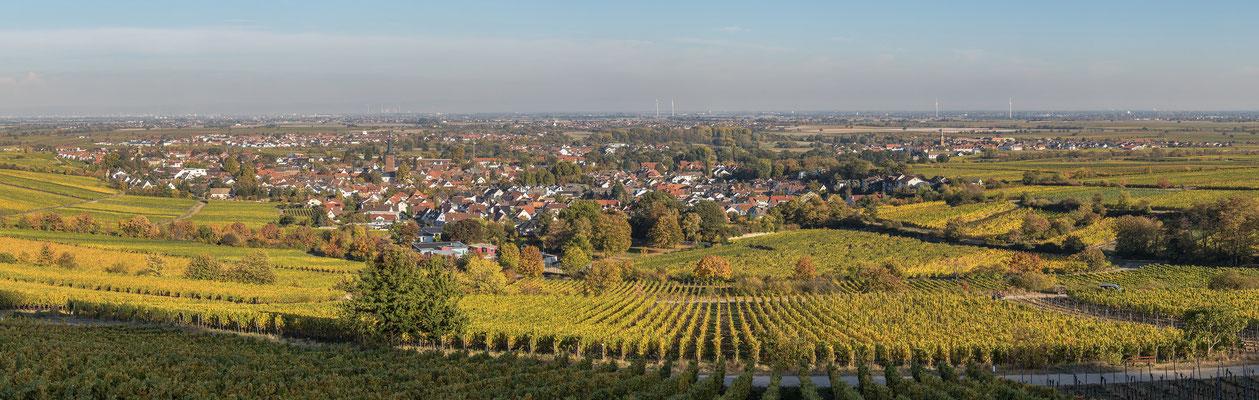 Panoramaaufnahme Deidesheim