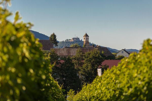 Edenkoben: Kloster Heilsbruck, Hambacher Schloss und Weinbiet in einer Sichtlinie