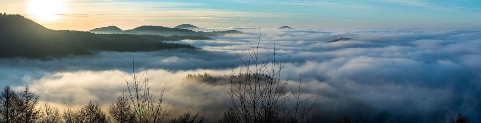 Pfälzerwald im Nebel