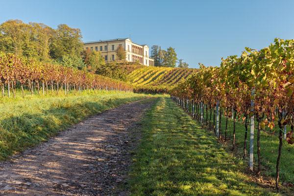 Herbststimmung an der Villa Ludwigshöhe, Aluminium-Wechselrahmen, Fotodruck auf hochwertigem Hahnemühle-Papier mit Passepartout, 70 x 50 cm, 130 €