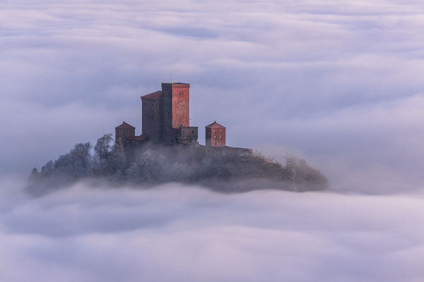 Burg Trifels erhebt sich über den Nebel