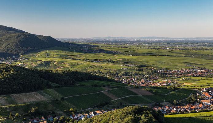 Blick nach Norden über Rheinebene bis zum Odenwald
