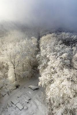 Neblige Schneelandschaft am Luitpoldturm