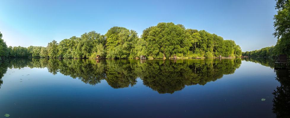 Friedlicher Morgen am Jockgrimer Altrhein