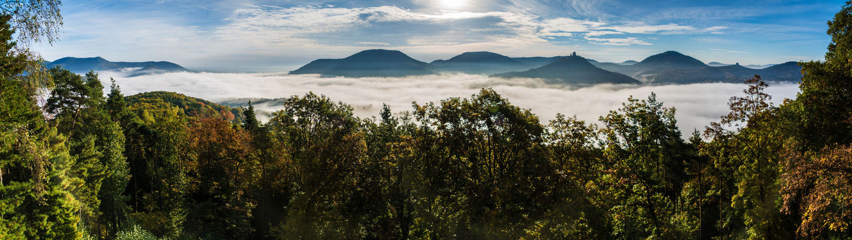 Nebelstimmung am Krappenfelsen