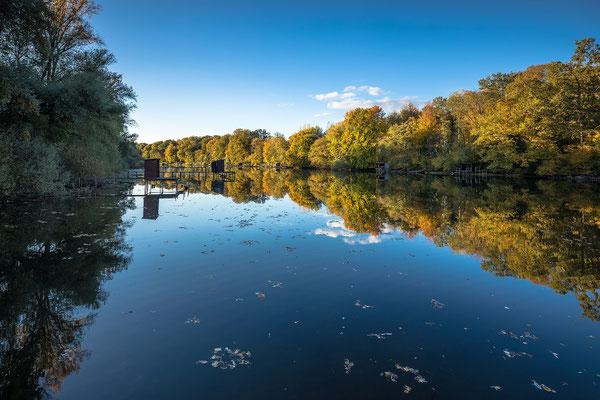Herbststimmung am Jockgrimer Altrhein