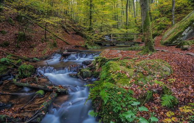 Herbst in der Karlstalschlucht