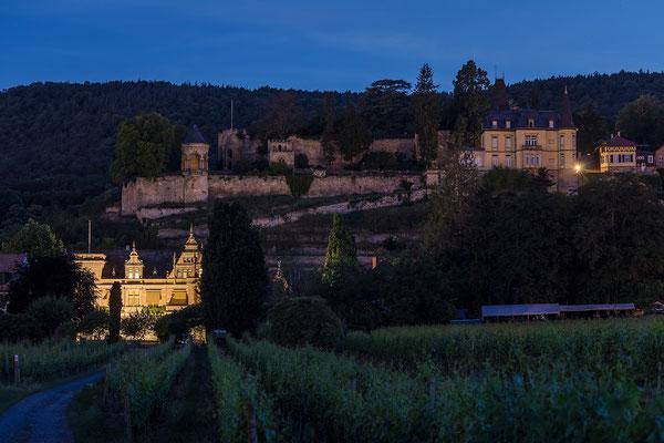 Blick auf Burg Winzinia und Haardter Schloss