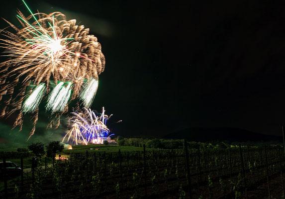 Feuerwerk zum Ludwigsfest
