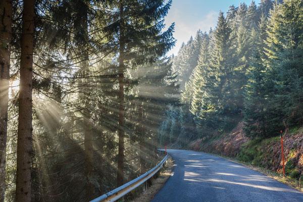 Leichter Nebel und Sonnenlicht