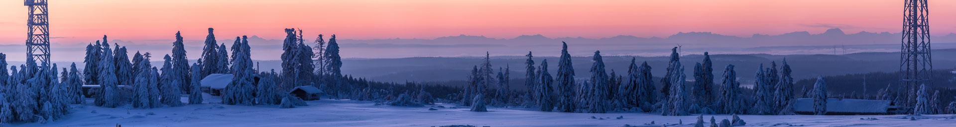 Alpensicht von der Hornisgrinde