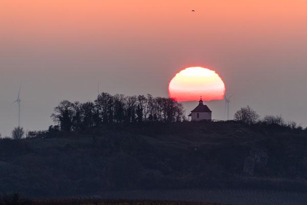 Sonnenaufgang hinter der Kleinen Kalmit