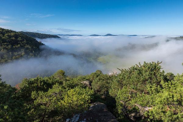 Blick auf den Bärenbrunnerhof im Nebel