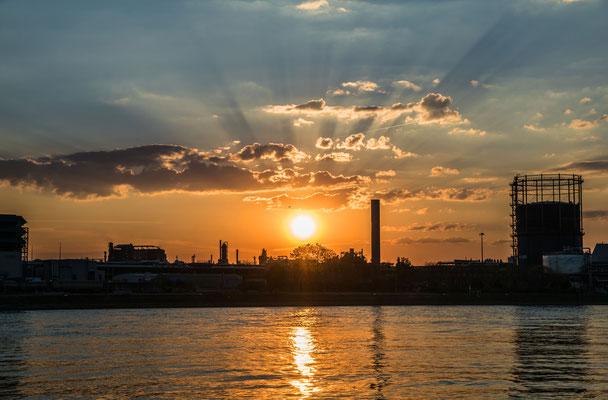 Sonnenuntergang an der BASF
