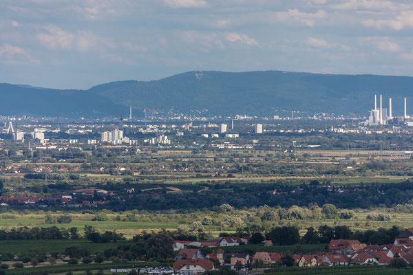 Blick von der Burg Battenberg in Richtung Heidelberg
