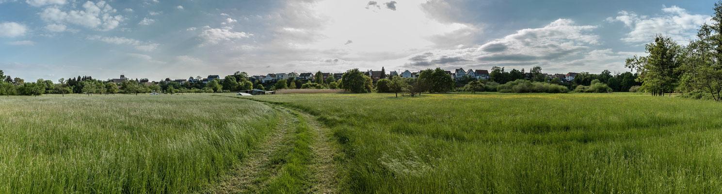 "Ausblick auf Berg vom ""Tiefgestade"""
