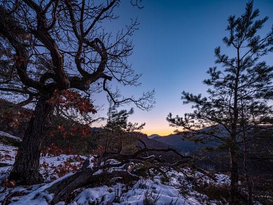 Wintermorgen auf dem Rindsberg