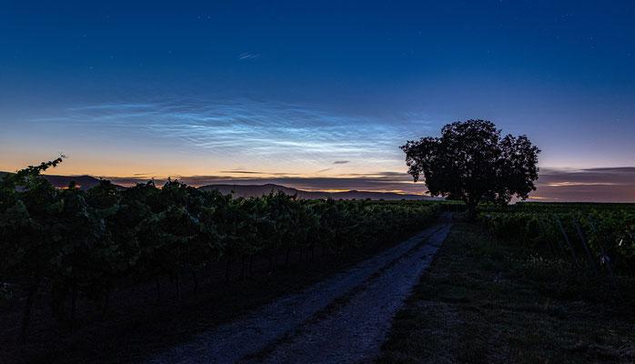 Leuchtende Nachtwolken bei Duttweiler