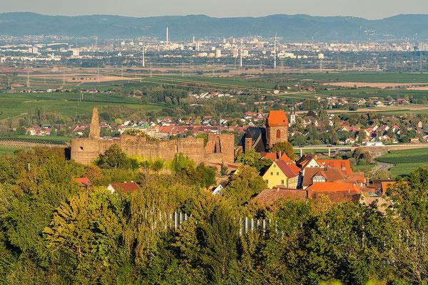 Fernsicht von Neuleiningen in die Rheinebene