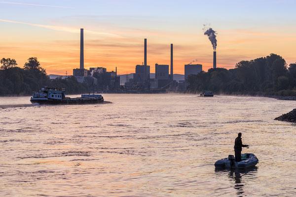 .... schon viel los auf dem Rhein ...